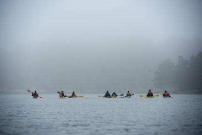 Kayaking trip to Stora Kalholmen in the Stockholm Archipelago