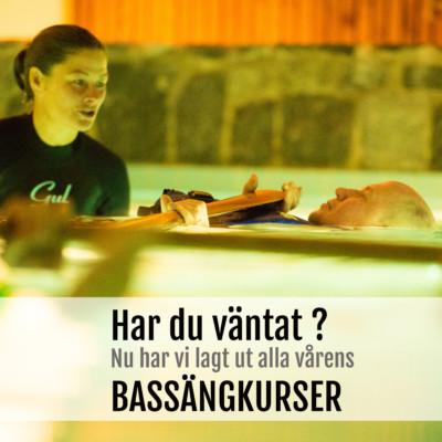 Bassängkurser med Horisont Kajak